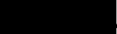 logo_sodini